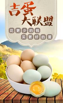 这是一张花更少的钱 买更好的蛋的展示图片